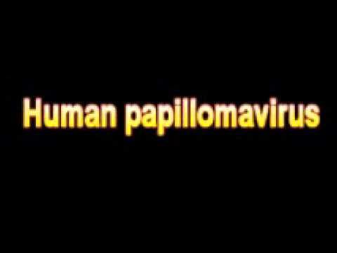 human papilloma virus (hpv) enfeksiyonu