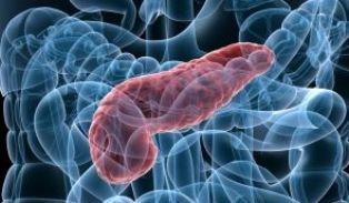 cancer de pancreas metastasico test for papilloma virus