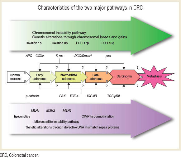 cancer genetic disease que es cancer colon