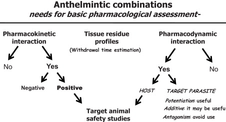 anthelmintic therapy