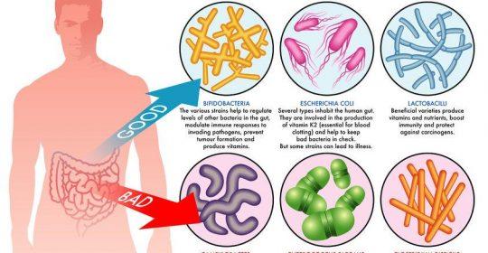 sintomi hpv in bocca cancer pancreas cauze si simptome