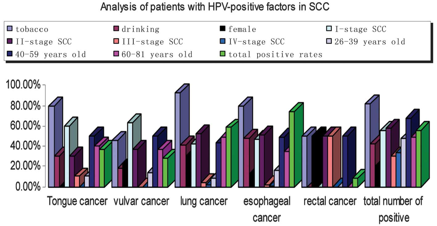 hpv positive esophageal cancer