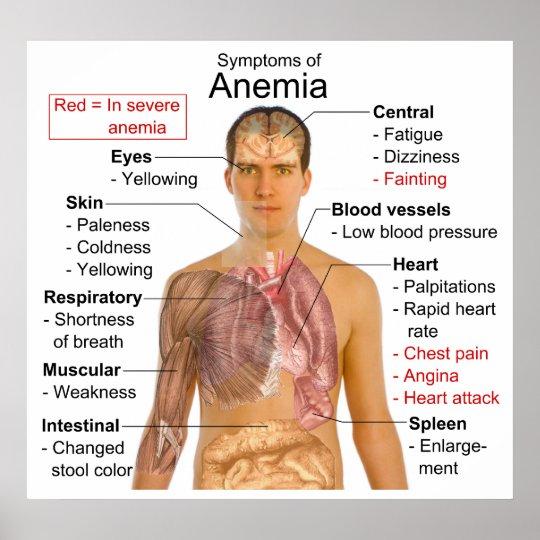 symptomes anemie