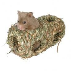 Paraziți pentru șobolan