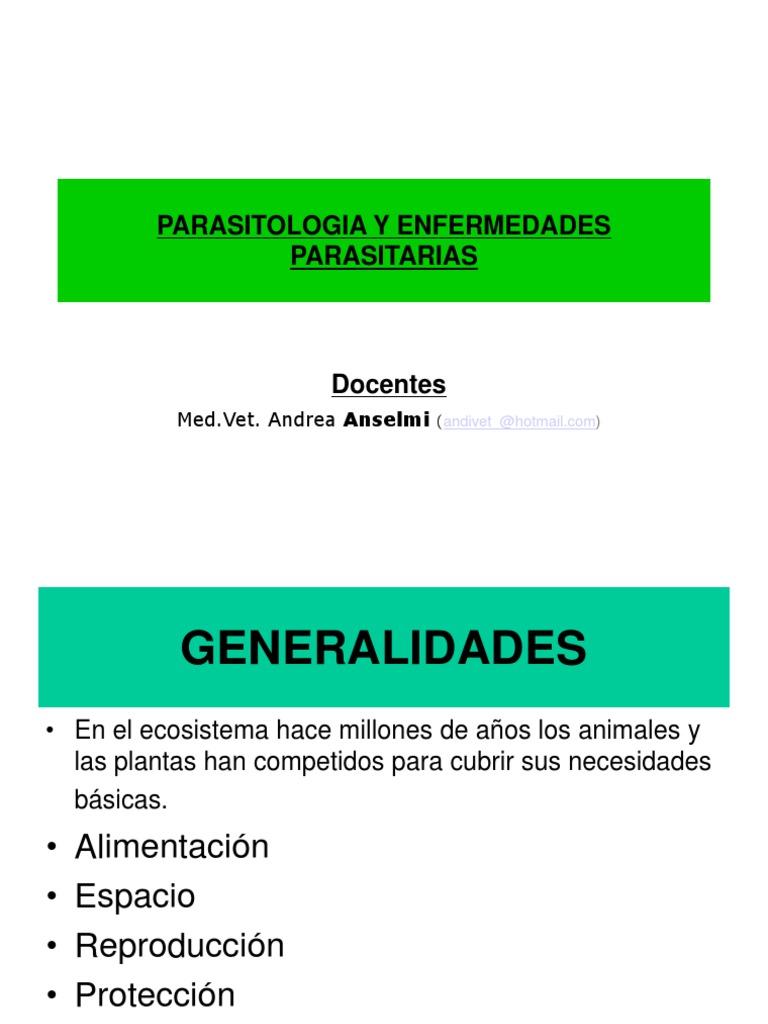 TRICOCÉFALO - Definiția și sinonimele tricocéfalo în dicționarul Spaniolă