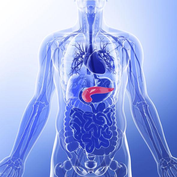 pancreatic cancer burping papiloma humano en ingles