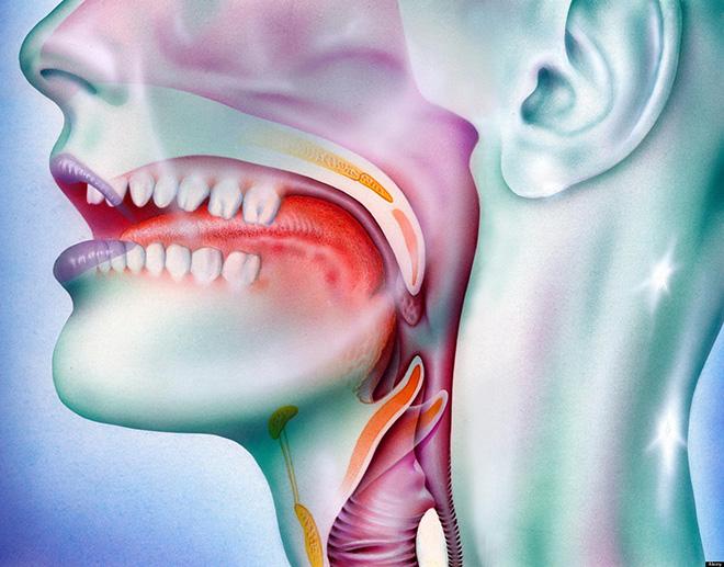 papilloma virus della gola