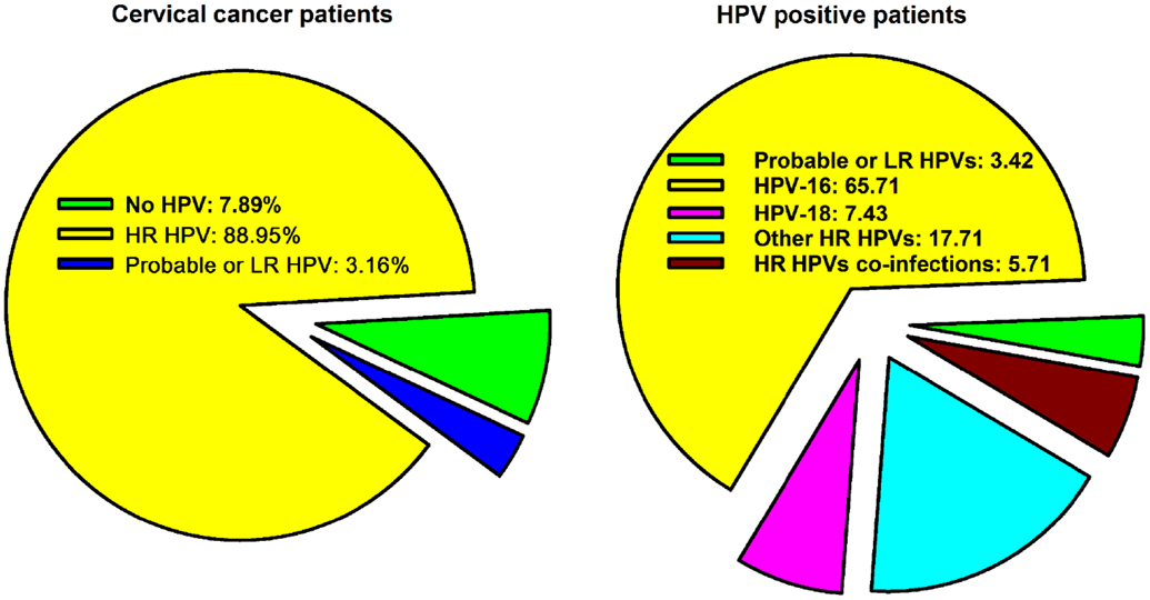 hpv 16/18 and head and neck cancer