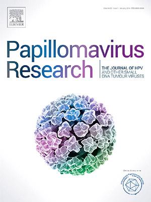 cura alimentara detoxifiere virus papiloma humano q significa