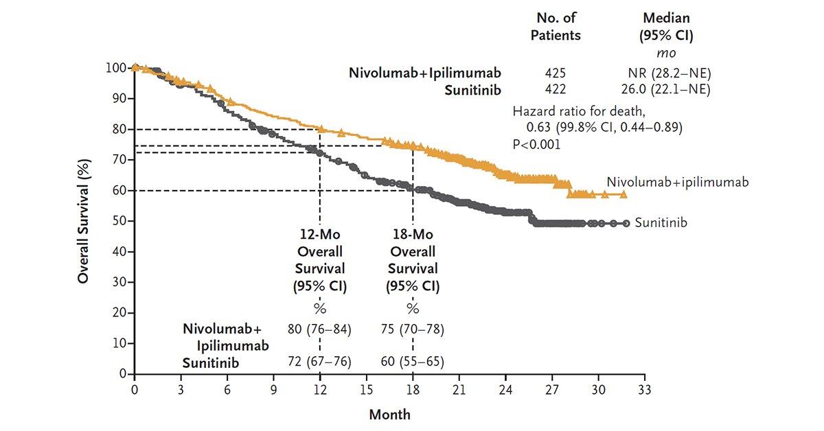 renal cancer nivolumab