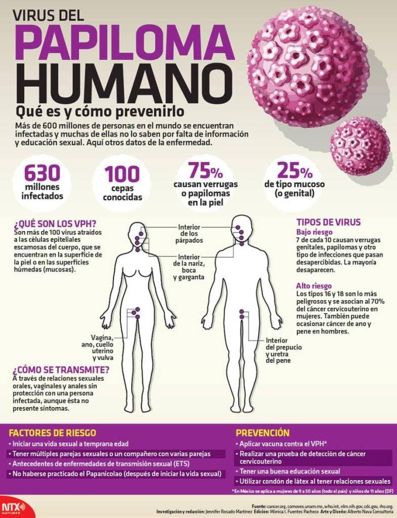 virus de papiloma humano q es