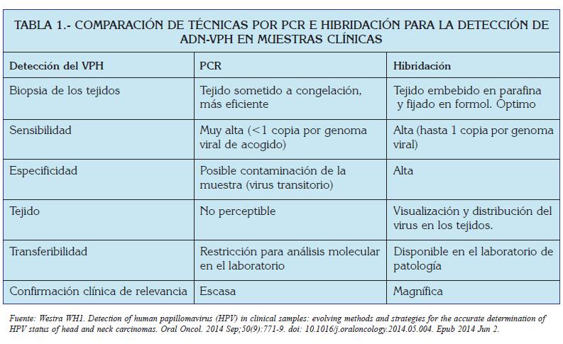 tres caracteristicas del papiloma humano