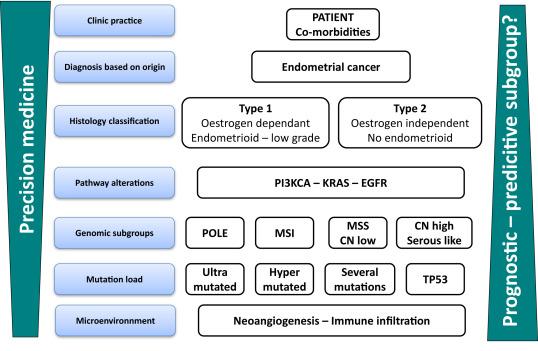 virus papiloma humano biologia cancer hepatic cu metastaze