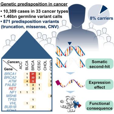 Diagnostic Techniques in Genetics