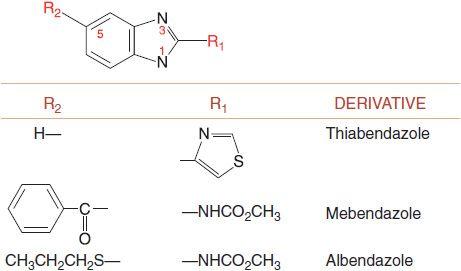 benzimidazole anthelmintic drugs multiple papillomas
