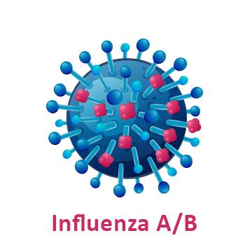 vaccino papilloma virus lazio papillomavirus homme symptome
