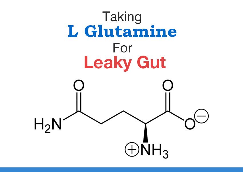 l-glutamine dysbiosis