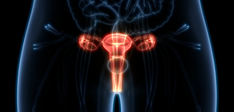 what causes breast papilloma