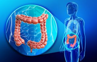 cancer intestinal function