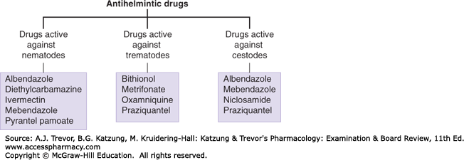 anthelmintic drugs for humans