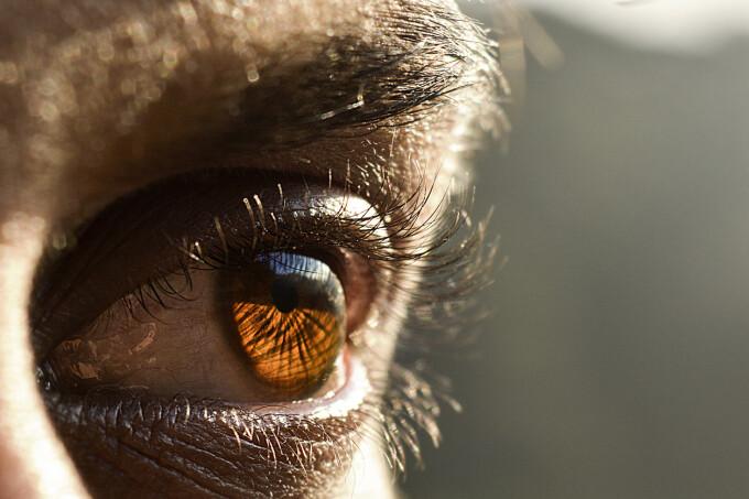 paraziti care afecteaza ochiul