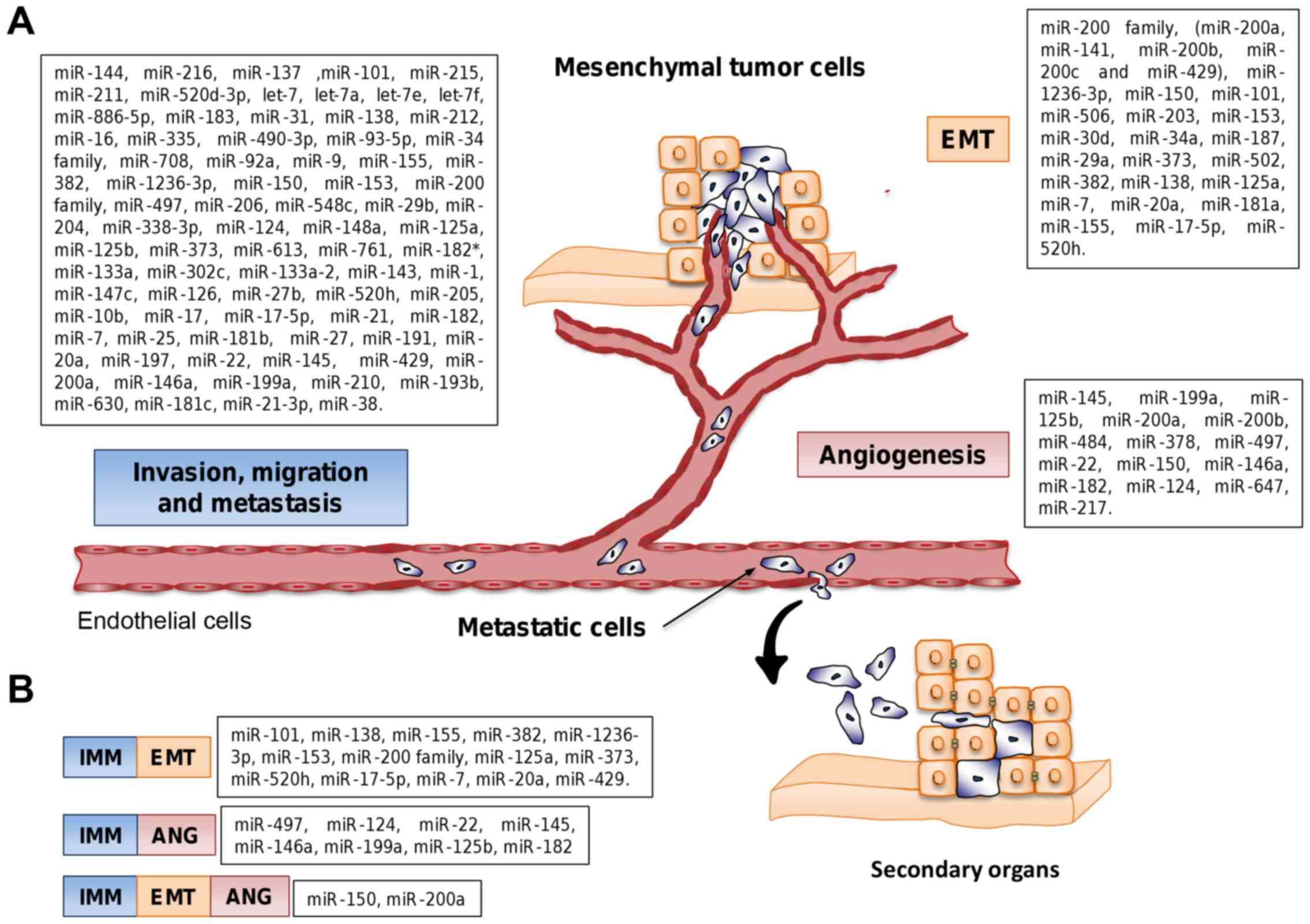ovarian cancer metastasis sites