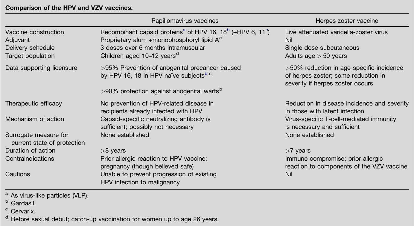hpv herpes vaccine