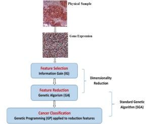 pancreatic cancer palliative care
