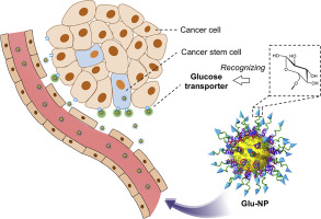 cancer renal gpc rr
