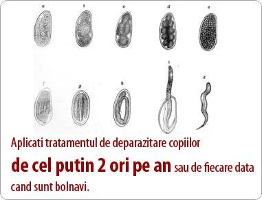 cate tipuri de paraziti intestinali sunt