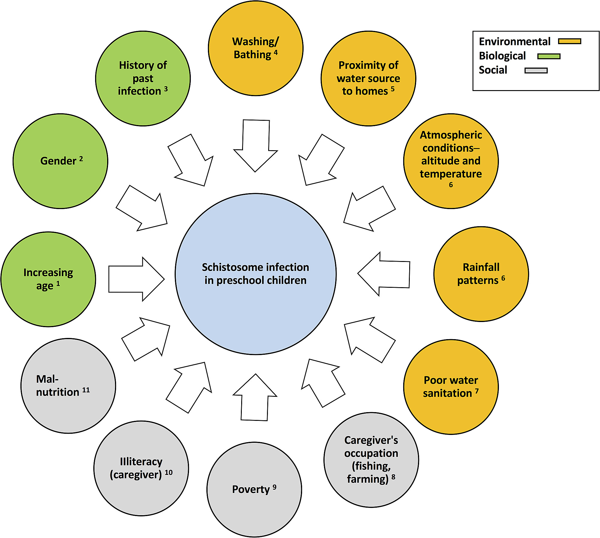 schistosomiasis risk factors