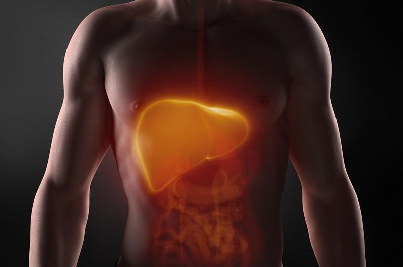 detoxifiere ficat cu usturoi