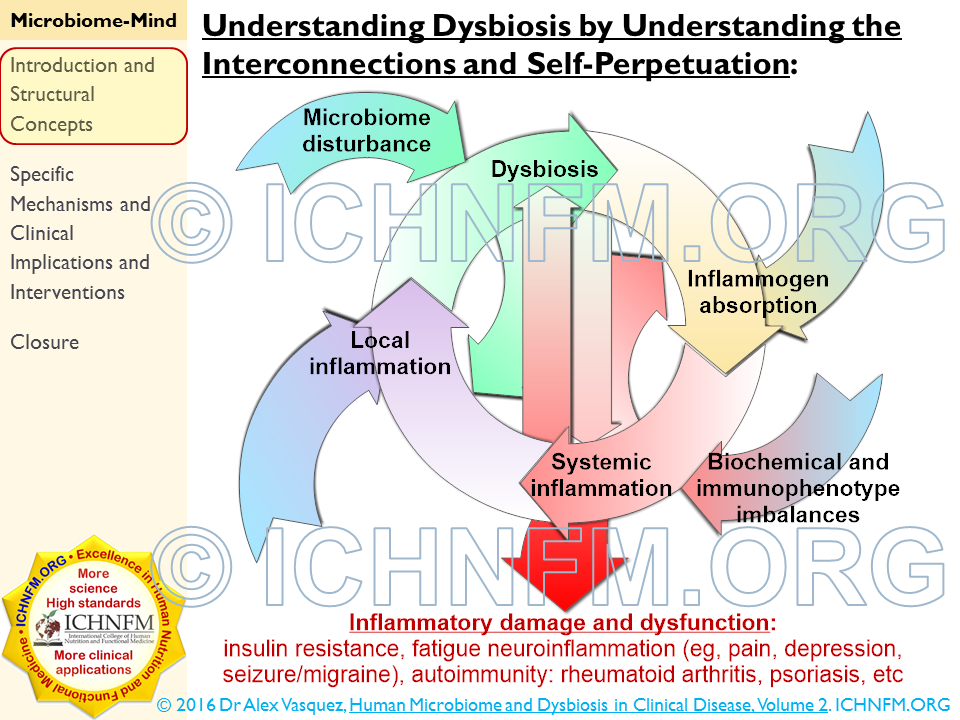 dysbiosis pain verrugas genitales por virus papiloma humano