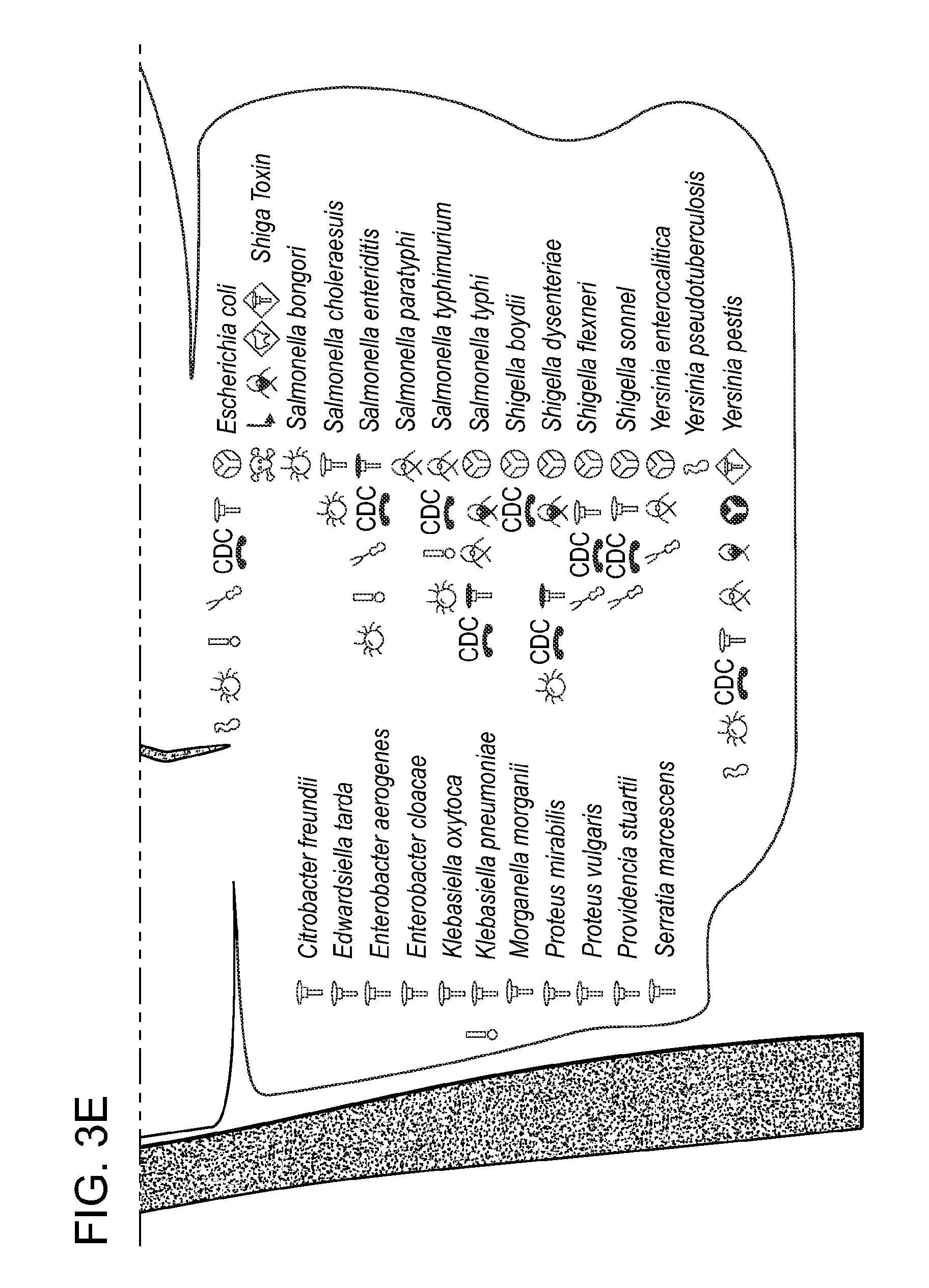 cursc complet microbiologie.pdf
