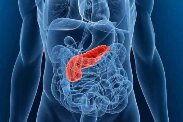 Pancreas dieta tratament alimente populare
