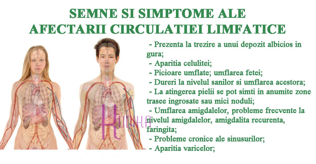 Metode prin care poți detoxifia sistemul limfatic și să combați bolile cronice