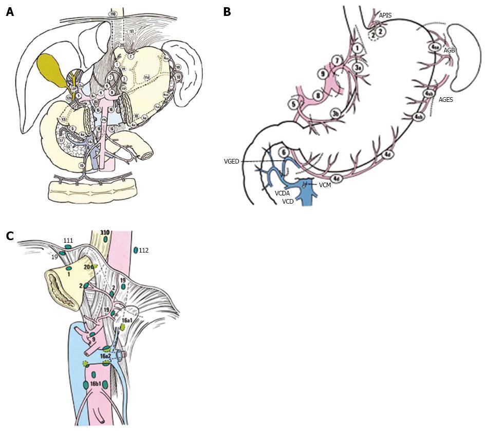 cancer peritoneal primario