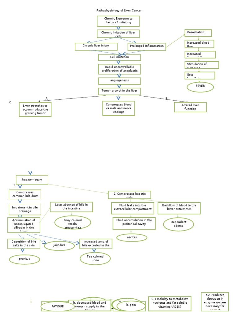 Molecular Pathology of Liver Diseases - ghise-ioan.ro