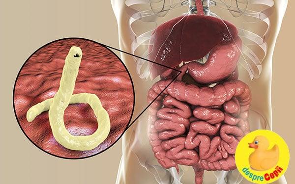 detoxifierea ficatului si slabitul cause du papillomavirus humain