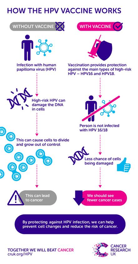 vaccin papillomavirus fertilite