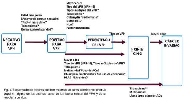 papiloma cuanto tiempo dura hpv virus zwanger