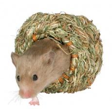 Șoarece de casă - Wikipedia