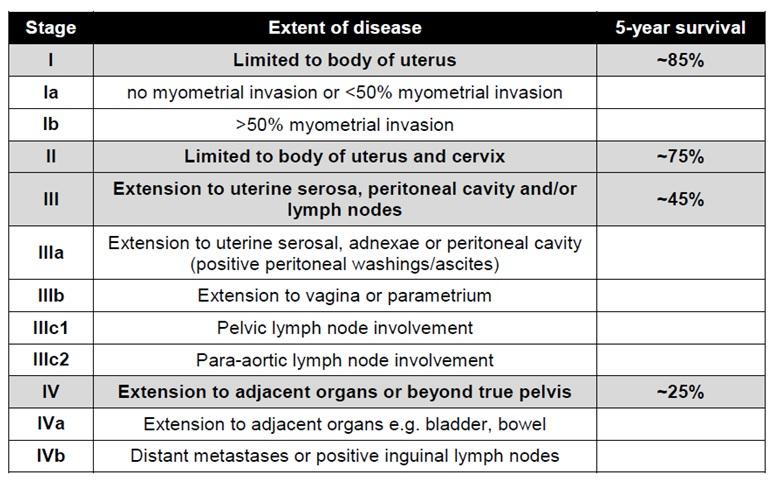 Uterine (Endometrial) Cancer: Prediction Tools | Memorial Sloan Kettering Cancer Center