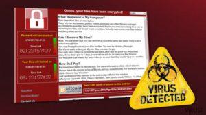 Cele mai bune metode de protectie impotriva virusilor si a hackerilor